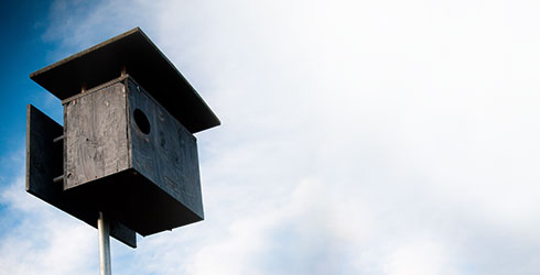 Estate Owl Boxes Mobile